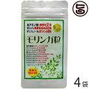 モリンガ粒500 (500粒入/100g)×4袋 沖縄 土産 人気 サプリメント 健康管理 送料無料 1