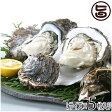 期間限定 隠岐のいわがき Lサイズ 5枚入り 3月から6月まで 送料無料 島根県 新鮮 魚介類 人気 贅沢