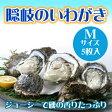 期間限定 隠岐のいわがき Mサイズ 5枚入り 3月から6月まで 送料無料 島根県 新鮮 魚介類 人気 贅沢