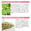 モリンガ粒500 (500粒入/100g)×4袋 沖縄 土産 人気 サプリメント 健康管理 送料無料 2