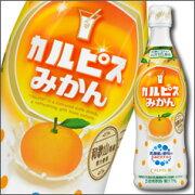 カルピス オレンジ