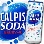【送料無料】カルピス カルピスソーダ500ml缶×2ケース(全48本)