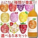 【送料無料】中埜酒造 國盛 果汁リキュールシリーズ選べる選り取り720ml×5本セット