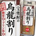 【送料無料】宝酒造 宝焼酎の烏龍割り480ml缶×1ケース(全24本)