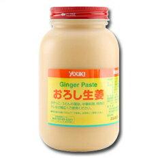 【送料無料】ユウキおろし生姜900g×2ケース(全24本)