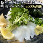 【AA】【1本釣り】壱岐産天然あおりイカ