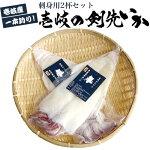 【AA】【1本釣り】壱岐産天然剣先イカ