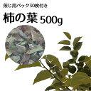 柿の葉 500g カキの葉 刻 薬剤師厳選 飲み方ガイド付