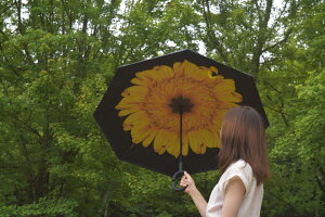 かわいいレディースおしゃれプレゼントや贈り物にこの傘