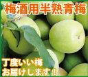 【紀州みなべ産(自家梅園産)】梅酒用・半熟青梅 1kg紀州南高梅(生梅)k