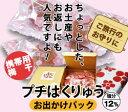 □【紀州南高梅】一粒ずつキャンディーのように包みましたプチはくりゅう行楽パック【20粒】