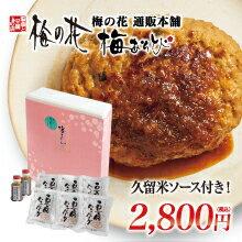 豆腐ハンバーグセット(6個セット)