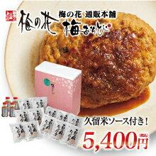 豆腐ハンバーグセット(12個セット)