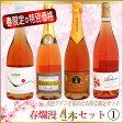 春爛漫ワインセット 1
