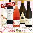 春爛漫ワインセット 5