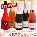 春爛漫ワインセット 2