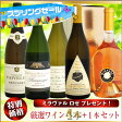 【スプリングセール】厳選ワイン 4本セット +1本(ロゼワインプレゼント)