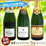 【スプリングセール】豪華シャンパーニュ3本セット2
