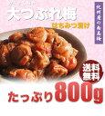 完熟の梅干だから・・・。お味は特急品とかわらないのです送料無料(北海道、沖縄、500円)紀州...