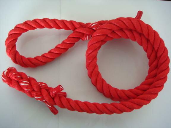 トレーニングロープ/カラーロープ/ターザンロープ/登り綱/送料無料/リプロン製ターザンロープ(登り綱) 赤 30mm×6M 10000251 ターザンロープ/登り綱トレーニング用ロープに最適♪アスレチックロープとしても大活躍♪