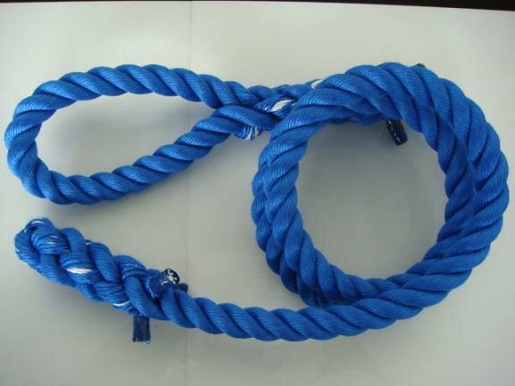 トレーニングロープ/カラーロープ/ターザンロープ/登り綱/送料無料/リプロン製ターザンロープ(登り綱) 青 24mm×9M 10000184 ターザンロープ/登り綱トレーニング用ロープに最適♪アスレチックロープとしても大活躍♪