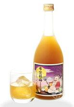 布袋福梅720ml【河内ワイン/大阪】