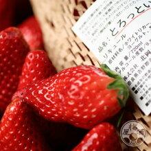 とろっといちご720ml【北岡本店/奈良】