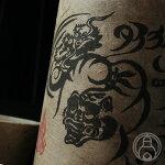 タイガー&ドラゴン720ml【四元酒造/鹿児島県】【焼酎】※お一人様2本まで