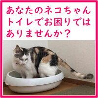 桐の木猫砂6Lウミダスジャパン天然の木を使用【送料無料】