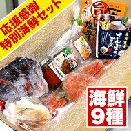北海道応援感謝キャンペーン9種類の豪華海産物を詰め込んだお得な大満足セット海鮮福袋