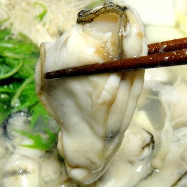 冷凍 牡蠣 プリプリした極上品 カキ 1kg
