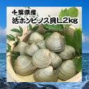 あす楽対応商品千葉県産活ホンビノス貝L2kg【白ハマグリ、大