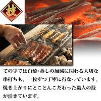 うなぎ鰻国産蒲焼ギフトプレゼント御成門(おなりもん)300g(100g×3尾)ての字手焼き