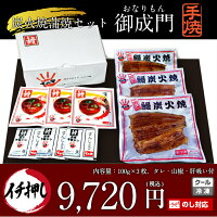 国産うなぎ御成門(おなりもん)手焼き炭火蒲焼100g×3尾ギフトセットお中元