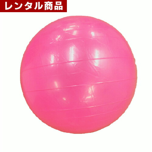 【レンタル】 ジャイアントバレーボール