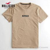 ホリスターメンズ刺繍ボックスロゴグラフィック半袖TシャツHollisterBoxLogoGraphicTeeタンベージュ