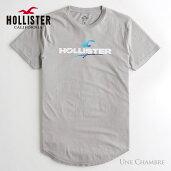 ホリスターメンズプリントロゴグラフィックカーブヘム半袖TシャツHollisterPrintLogoGraphicTeeグレー