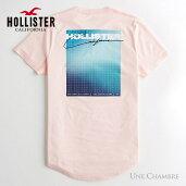 ホリスターメンズプリントロゴグラフィックカーブヘム半袖TシャツHollisterPrintLogoGraphicTeeライトピンク