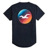 ホリスターメンズプリントロゴグラフィックカーブヘム半袖TシャツHollisterPrintLogoGraphicTeeネイビー