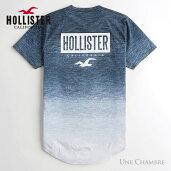 ホリスターメンズプリントロゴグラフィックカーブヘム半袖TシャツHollisterPrintLogoGraphicTeeヘザーネイビーグラデーション