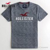 ホリスターメンズアップリケロゴグラフィック半袖TシャツHollisterLogoGraphicTeeホワイト