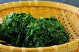 天草産 生あおさのり(青さのり)100g【国産・九州・熊本】あおさ 青さ アオサ 海藻