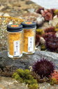 【春季限定】天草殻出し生うに<ムラサキウニ>50g【無塩・無添加】うに瓶詰めギフトプチギフトのし対応
