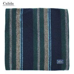 Calida(カリダ) クッションカバー 45×45 ストライプ グリーン 71881