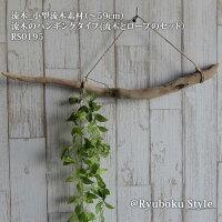 流木_ハンギング(〜59cm)流木のハンギングタイプ(流木とロープのセット)RS0195