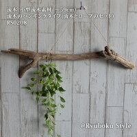 流木_ハンギング(〜59cm)流木のハンギングタイプ(流木とロープのセット)RS0208
