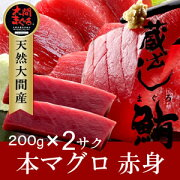 大間マグロ赤身200g×2柵|青森県大間産大間のまぐろ本マグロ【楽ギフ_のし】