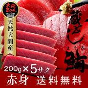 大間本マグロ赤身200g×5柵|青森県大間産大間のまぐろ刺身【楽ギフ_のし】お歳暮ギフト