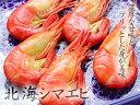 北海道産北海シマエビ 500g前後 - 鮭いくら・スモーク専門店マルタカ
