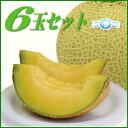 静岡の温室マスクメロンをお届け!静岡産 マスクメロン 6玉[1.5kg以上×6]